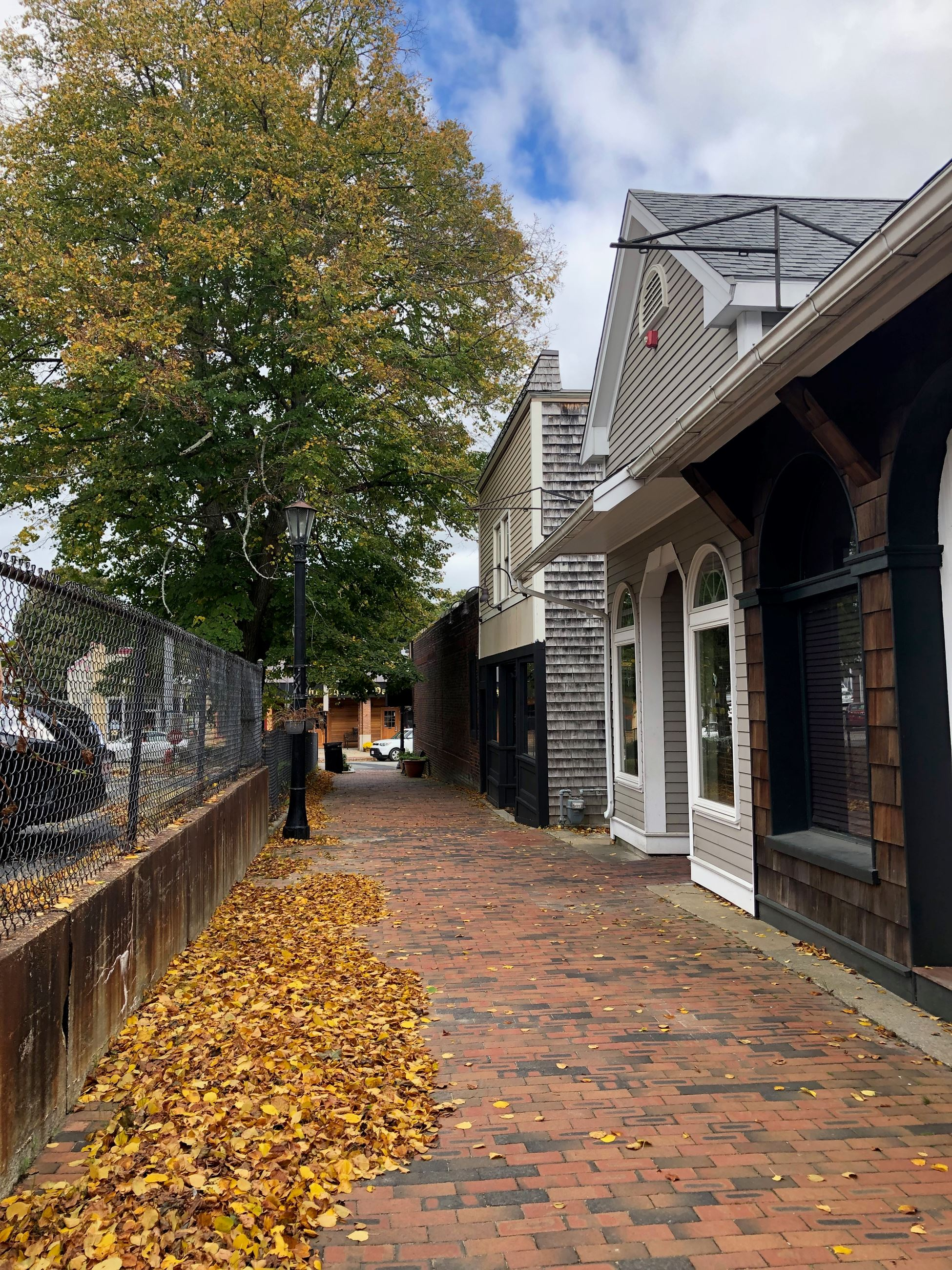 Thatchers Row in the Fall