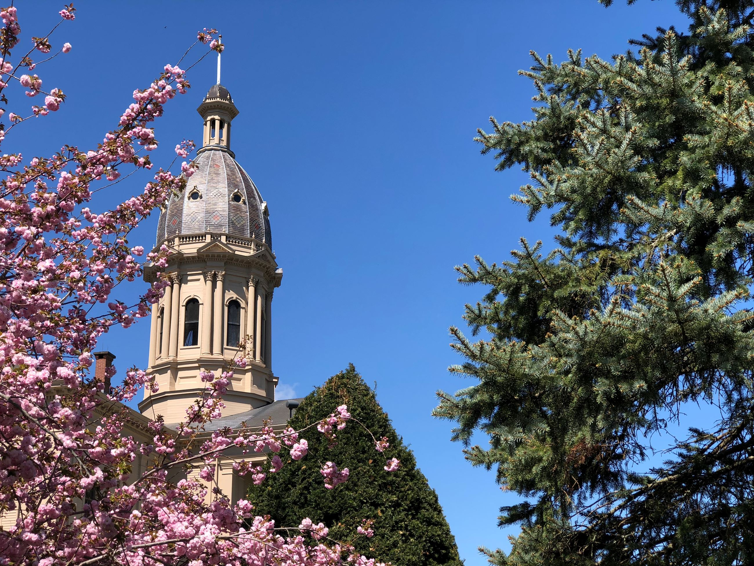 town hall cupola in spring