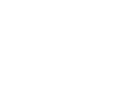 Middleborough seal